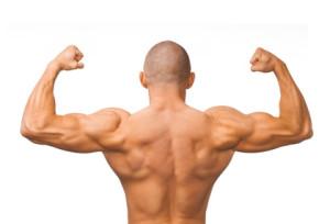 So trainieren Sie Ihren Rücken mit der Klimmzugstange