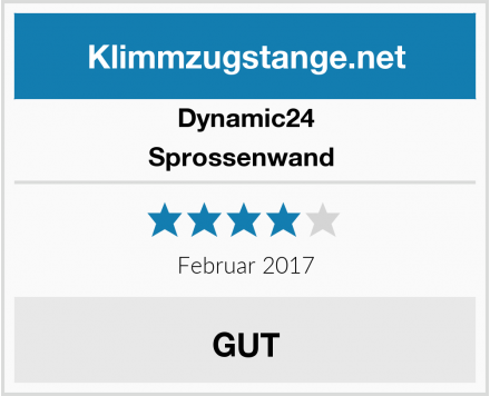 Dynamic24 Sprossenwand  Test